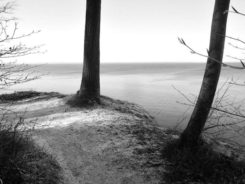 Ein Spaziergang in schwarz-weiß